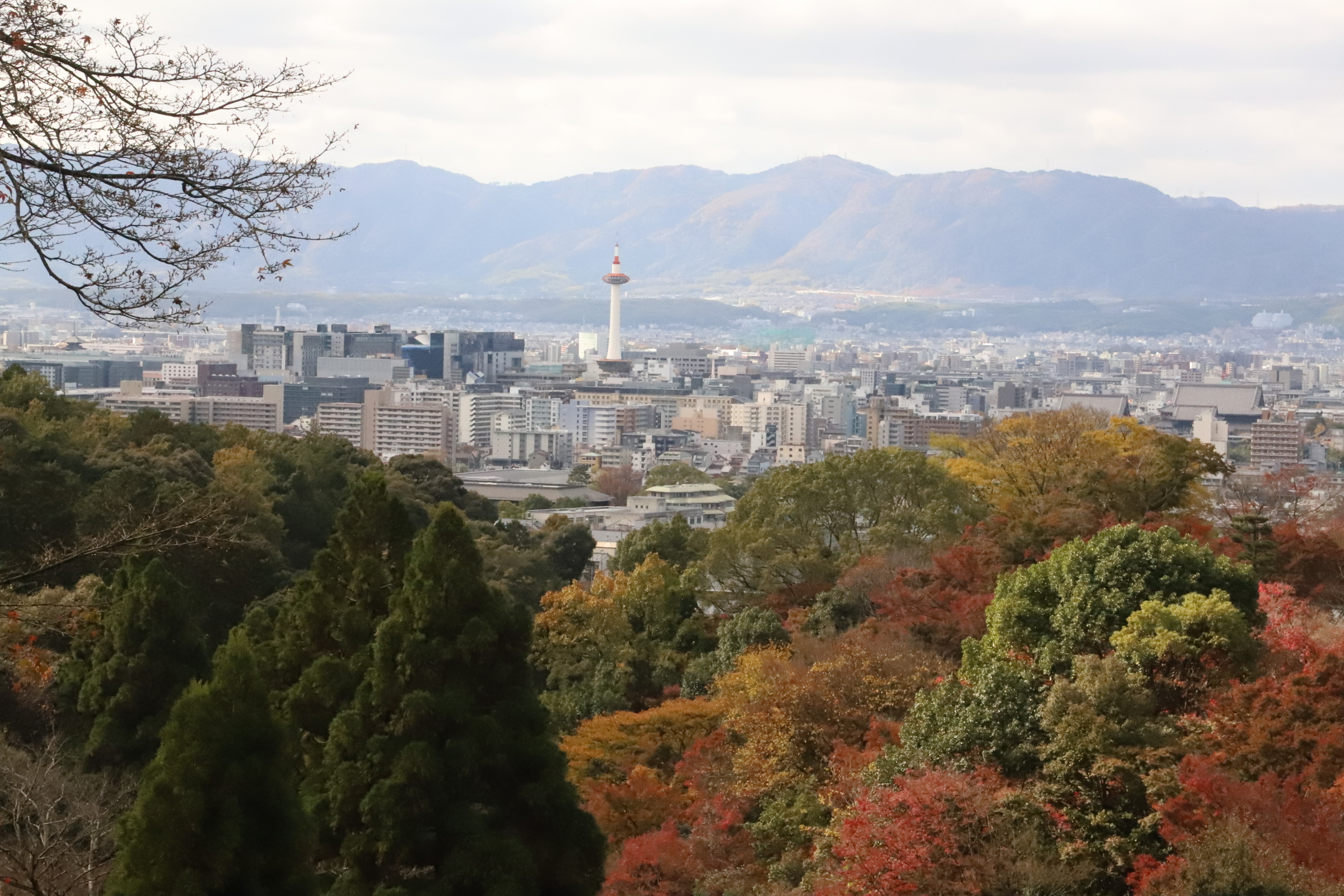 deji1-2020-koyo-kiyomizudera4.jpg