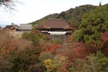deji1-2020-koyo-kiyomizudera5.jpg