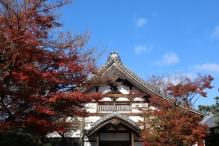 deji1-2020-koyo-kodaiji2.jpg