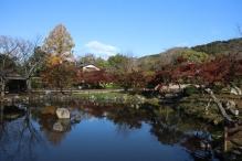 deji1-2020-koyo-maruyamapark2.jpg