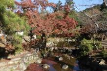 deji1-2020-koyo-maruyamapark4.jpg
