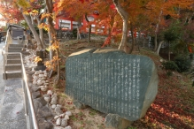 deji1-2020-koyo-sumadera2.jpg