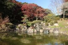 deji1-2020-koyo-sumarikyupark3.jpg