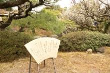 deji1-2021-ume-jonangu8.jpg