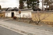 deji1-2021-ume-tenryuji2.jpg