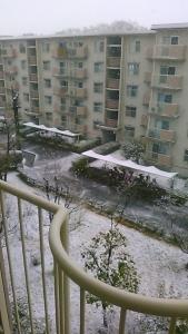 200330 雪のところざわ