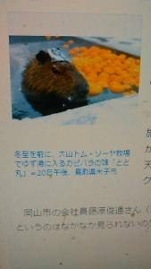 201221 ゆず湯