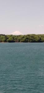210419 多摩湖 富士山