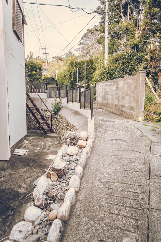 20200629_watakanojima-8.jpg
