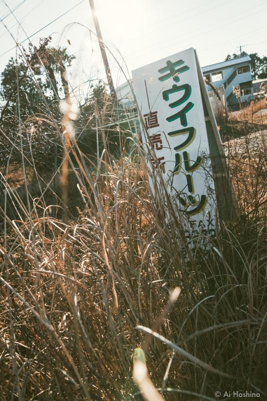 20210311_fukushima-12.jpg
