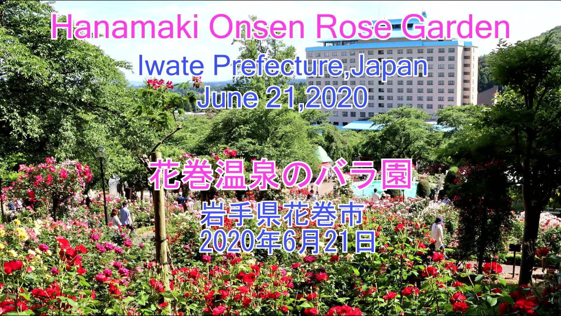 花巻温泉のバラ園 2020