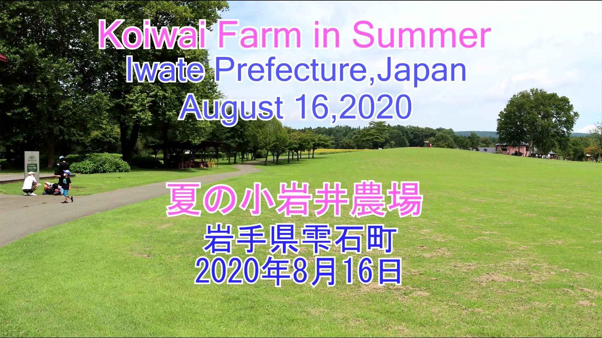 夏の小岩井農場 2020年