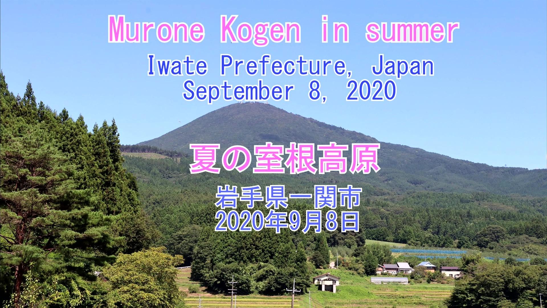 夏の室根高原 2020年