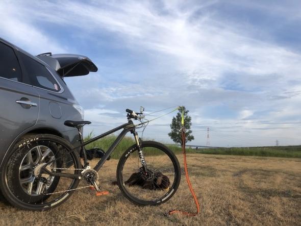 BikejoringMTB.jpg
