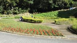 10/24 第二P側からの道  くりはま花の国
