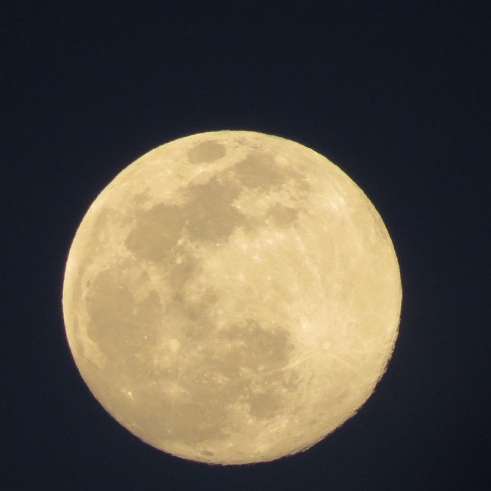 1満月IMG_6250