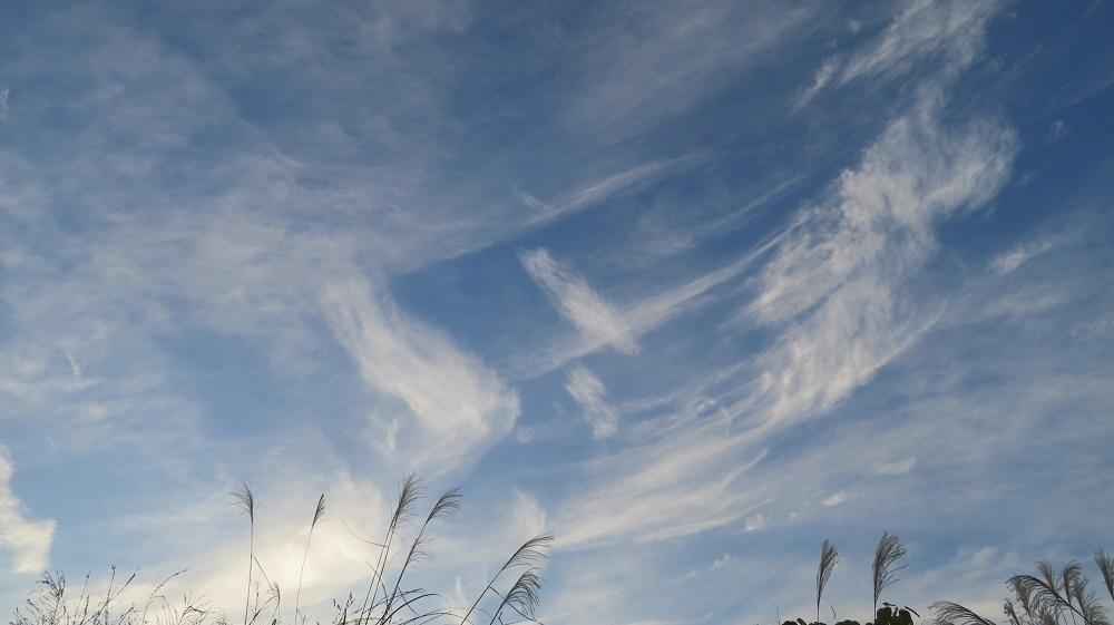 1浮雲IMG_7165