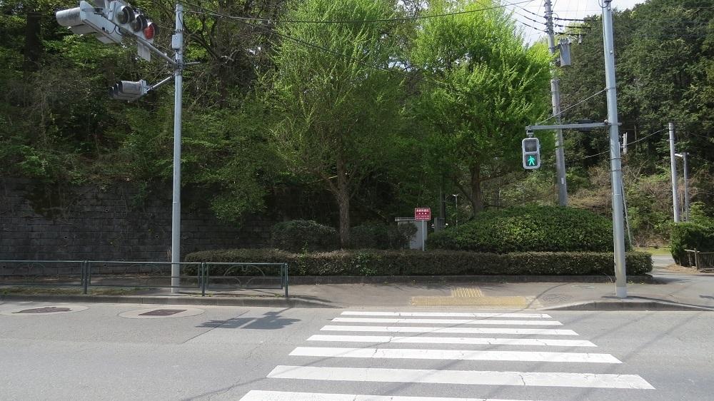 3歩道を渡るIMG_6844