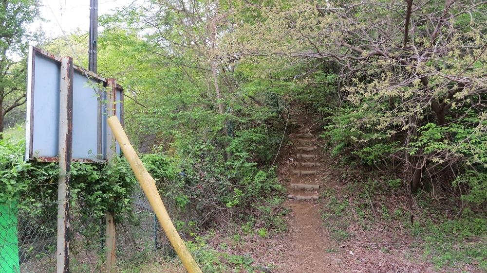 5登山口IMG_6845