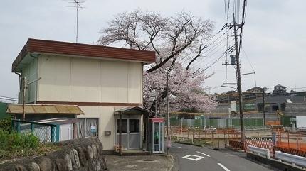 4IMG_6753.jpg