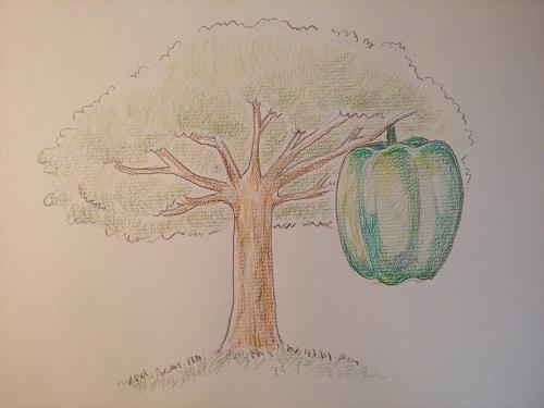 シリウスの果実1