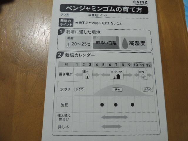 DSCN4864.jpg