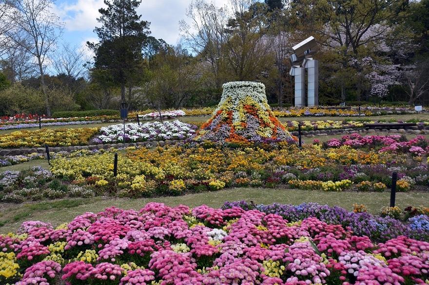 花の文化園・春の花#1 (0)
