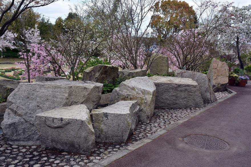 花の文化園・春の花#2 (0)