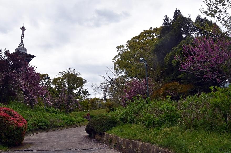 鶴見・花の谷 (16)