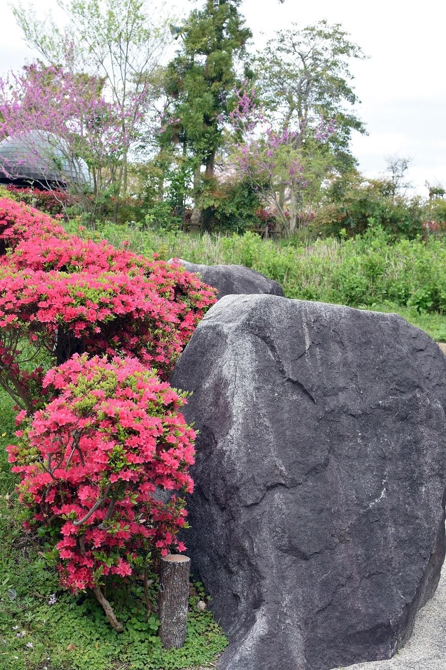 鶴見・花の谷 (19)