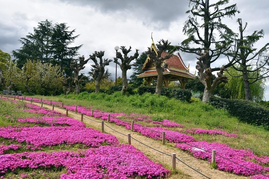 鶴見・タイ庭園 2020 (12)