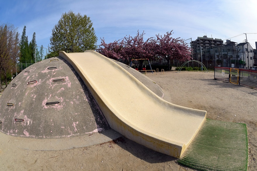 平野公園八重桜 (3)