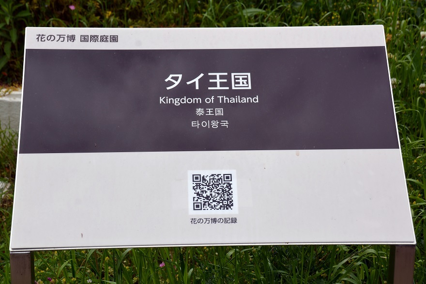 鶴見・タイ庭園 2020 (18)