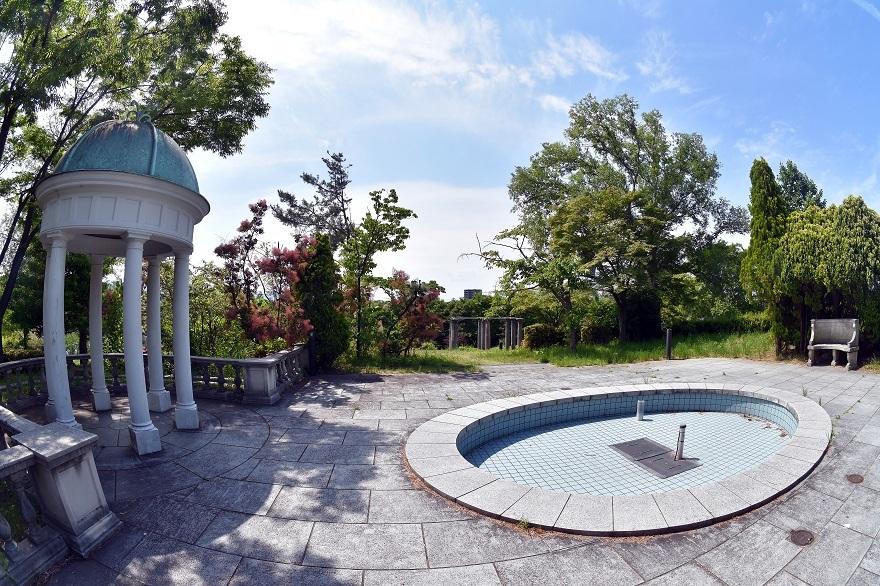 鶴見・イギリス庭園とスモークツリー (15)