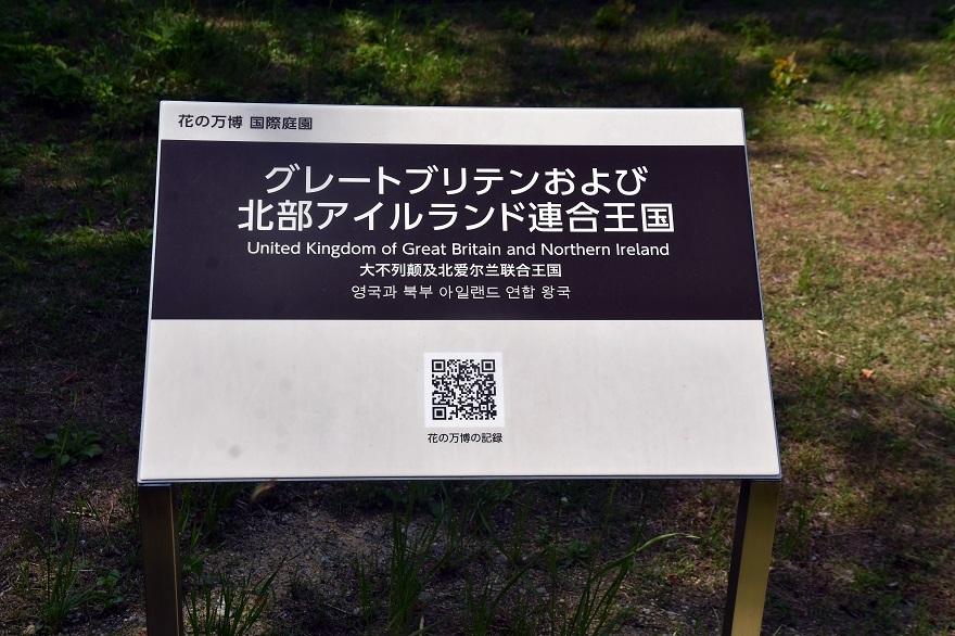 鶴見・イギリス庭園とスモークツリー (16)