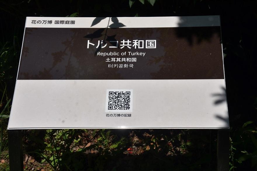 鶴見・トルコ庭園とバラ (17)
