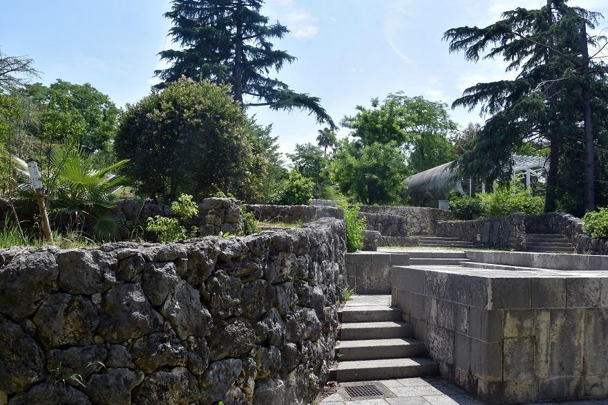 鶴見・イスラエル庭園とザクロ (0)
