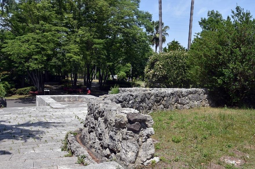 鶴見・イスラエル庭園とザクロ (6)