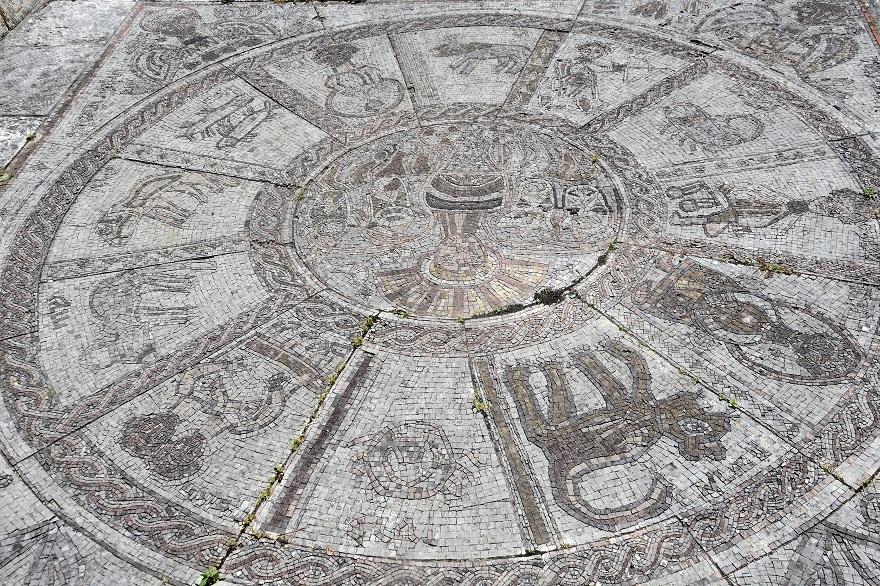 鶴見・イスラエル庭園とザクロ (4)