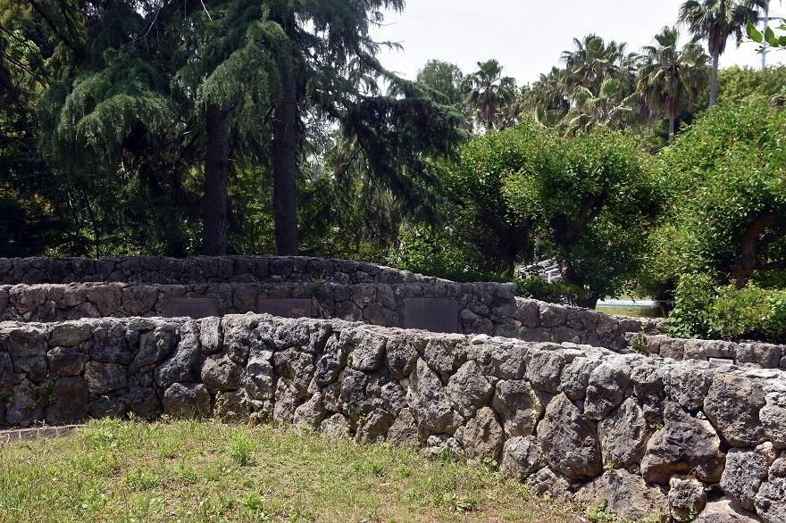 鶴見・イスラエル庭園とザクロ (11)