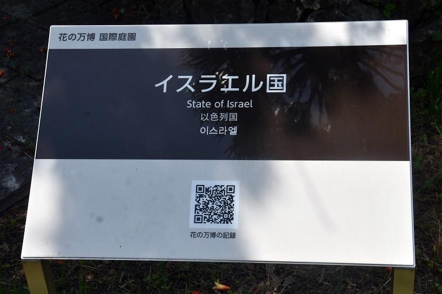 鶴見・イスラエル庭園とザクロ (21)