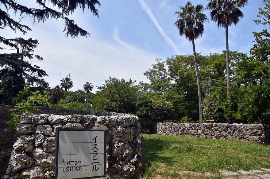 鶴見・イスラエル庭園とザクロ (20)