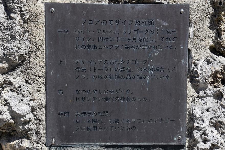 鶴見・イスラエル庭園とザクロ (05)