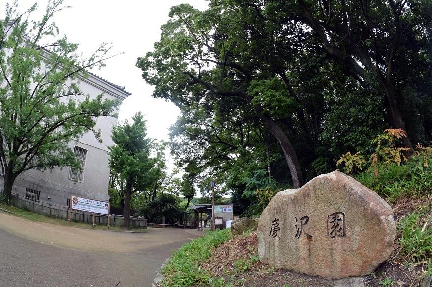 慶沢園・梅雨 2020 (25)