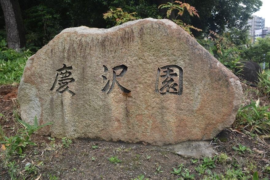 慶沢園・梅雨 2020 (26)