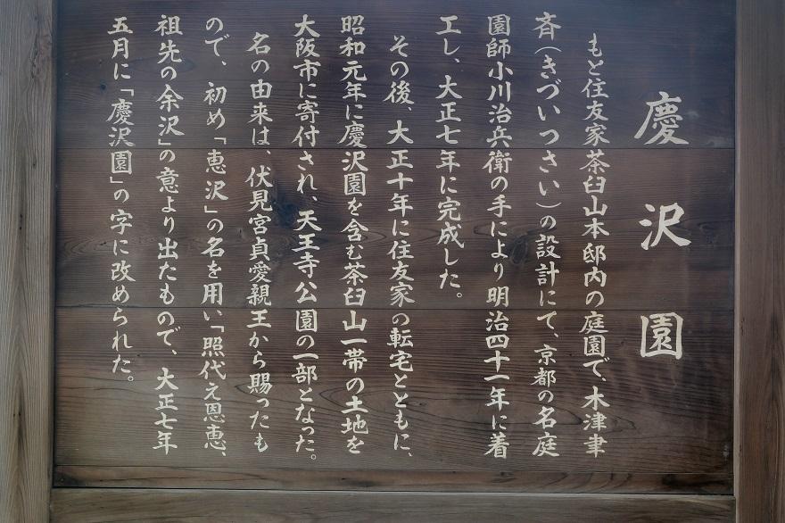 慶沢園・梅雨 2020 (27)