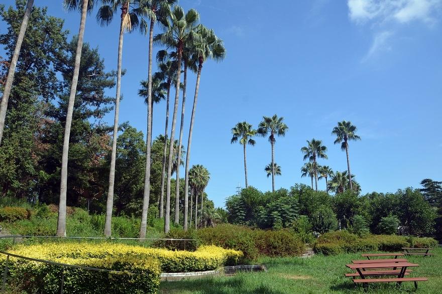 鶴見・カリフォルニア州庭園 (0)