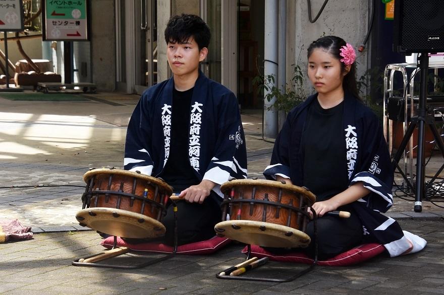 花の文化園、秋のコンサート・太鼓#1 (11)