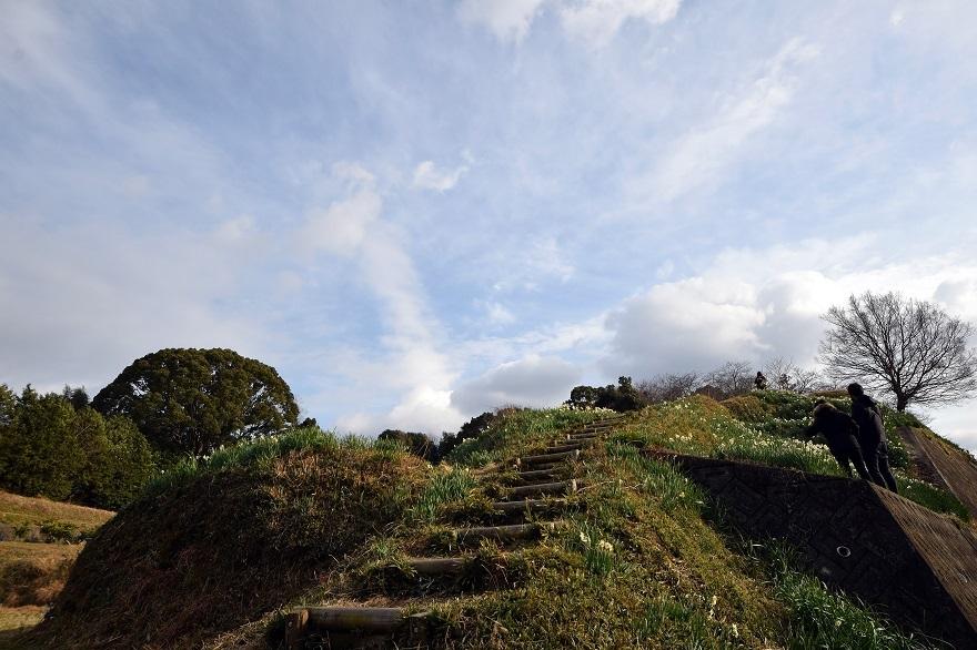 水仙の丘2021年1月 (14)
