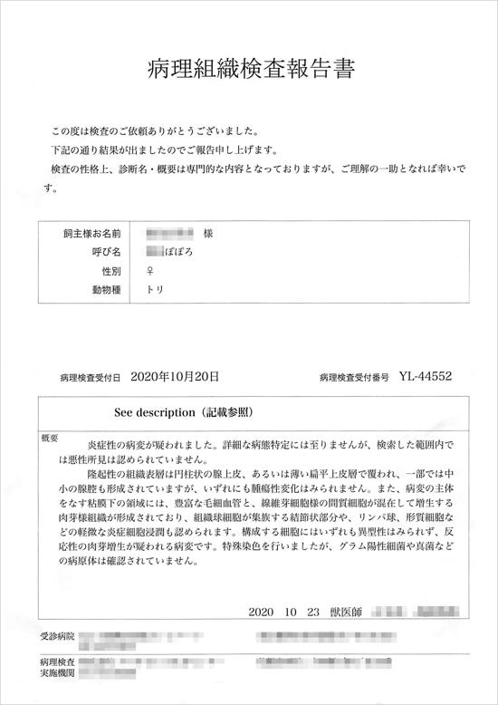 th_ぽぽろ病理検査20201030151139